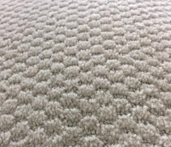 Pattern Carpet Shaw – Rain Dance – Beige   $11.00 / sq. yd.  ( $1.22 / sq. ft. )  -  In Stock