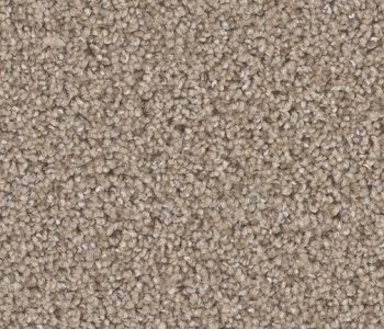 Dreamweaver - Pikes Peak - Elk Horn  $9.50 / sq. yd.  ( $1.06 / sq. ft. )  - In Stock
